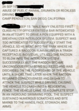 report of raccoon and interlock